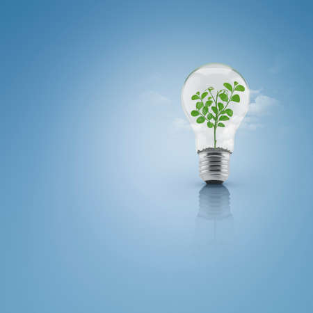 growing inside: Tree leaves growing inside light bulb with soil over cloud and blue background, Green eco energy concept Stock Photo