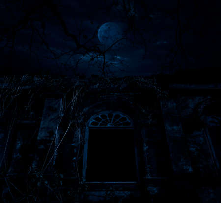 over the moon: Old ancient window castle with dead tree over moon and cloudy sky, Spooky background, Halloween concept