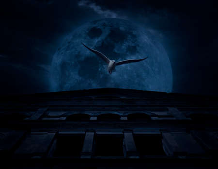 over the moon: Horror scene of bird fly with old grunge castle over moon and cloudy sky, Spooky background, Halloween concept