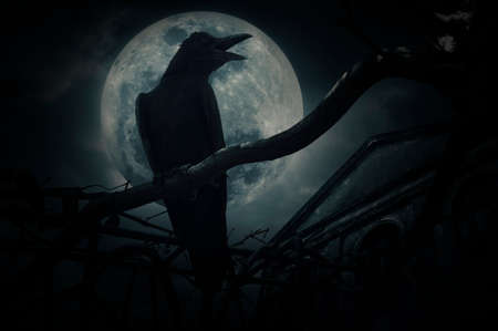 croak: Crow sit on dead tree trunk and croak over fence, old grunge castle, moon and cloudy sky, Mysterious background, Halloween concept Stock Photo