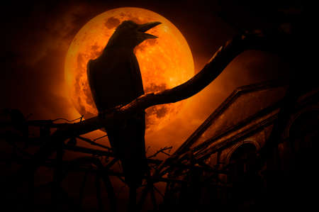 Crow sit on dead tree trunk and croak over fence, old grunge castle, moon and cloudy sky, Mysterious background, Halloween concept Stockfoto