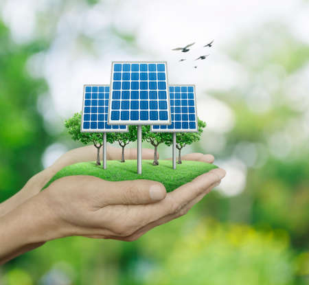 Solar cell in man hands over blur green tree with birds, Ecological concept