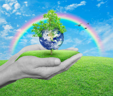 earth handful: Planet and tree in human hands over green grass with blue sky, clouds, rainbow and birds, Save the earth concept, Elements of this image furnished by NASA