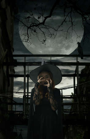 Scary halloween witch standing over damaged old wooden bridge, bird, dead tree, full moon with spooky cloudy sky, Halloween mystery concept Stockfoto