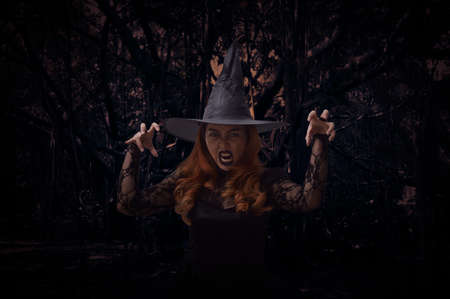Scary halloween witch standing over spooky dark forest with tree, leaves and vine, Halloween mystery concept