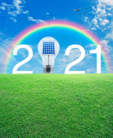 2021 white text and light bulb with solar cell inside on green grass field over rainbow, birds and blue sky with white clouds, Happy new year 2021 ecological cover concept