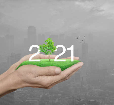 2021 white text with growing tree on green grass field in man hands over pollution modern city tower and skyscraper with birds, Happy new year 2021 ecological cover concept Banco de Imagens