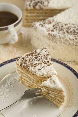 White, riangle piece of a coconut cake