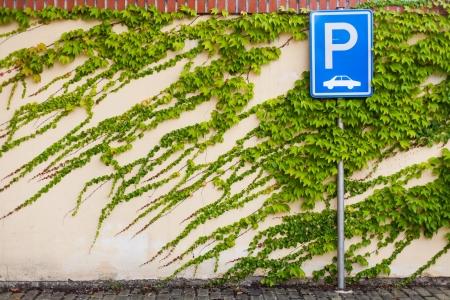 se�al parking: Parking signo