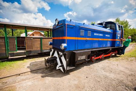 Przyslup, Poland - July 18, 2013  Blue Narrow-gauge railway, steam train  Tourist train rides in the summer from Cisna to Przyslup in Bieszczady mountains