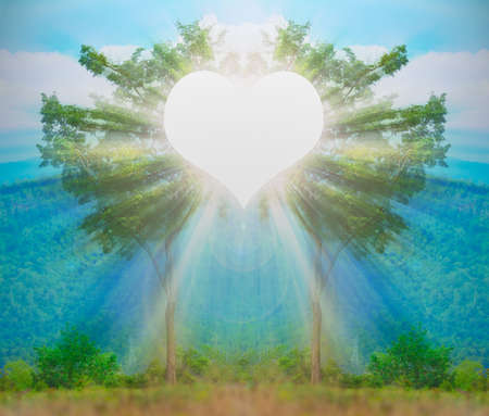 Think green love,care trees heart-light