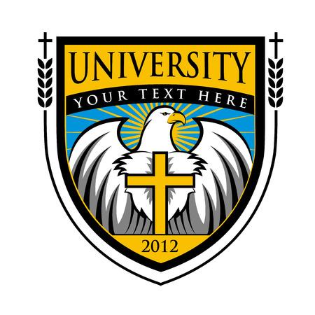 computer education: University