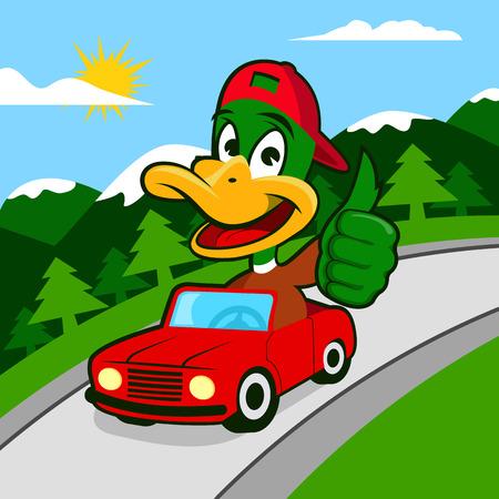 車を運転する鴨