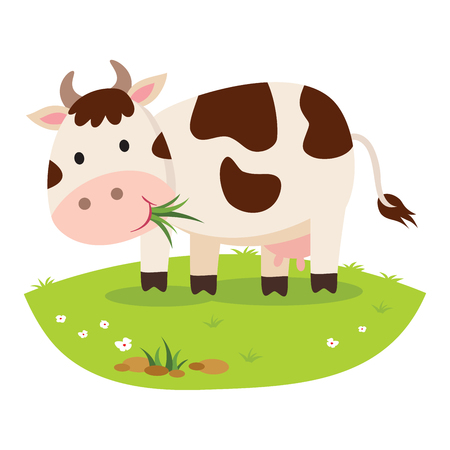 Cow eating grass. Cattle Illustration