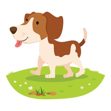 dog: Farm dog. Cheerful dog .