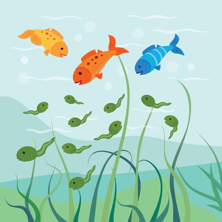 オタマジャクシや魚。空腹の魚は、オタマジャクシのいくつかを食べる。