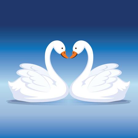 Zwaan hart. Twee zwanen die een hart creëren.