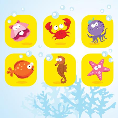 saltwater pearl: Sea creatures