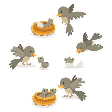 Vogelfamilie. Vector illustratie. Vector Illustratie