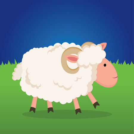 Farm sheep. sheep in a  meadow. Sheep walking on a farm at night.  イラスト・ベクター素材