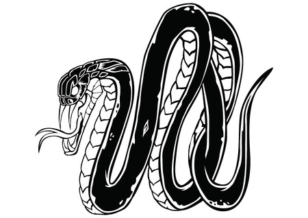 Snake Dark Art Animal cobra Design Vector