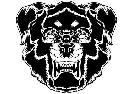 Dog Head Vector Animal Art Backgrounds