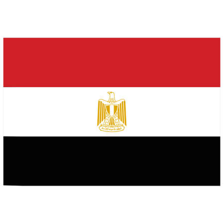 National flag of Egypt - Flat color icon.