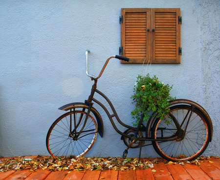 cruiser bike: an old bicycle with a plant on it Stock Photo