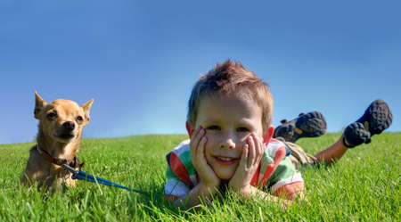 leashes: a boy and a tiny chihuahua in the grass