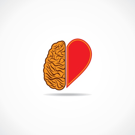 heart brain:  think from heart and brain concept