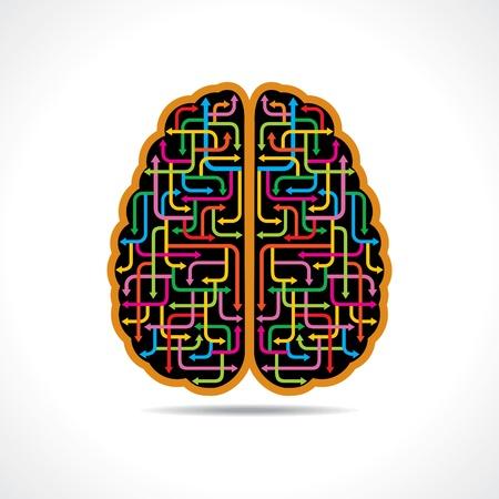preferencia: Cerebro forma de flechas de colores