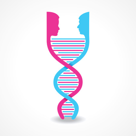 male and female face make DNA strand stock vector