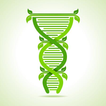Ecologie concept- bladeren maken van een DNA-streng voorraad vector Stock Illustratie