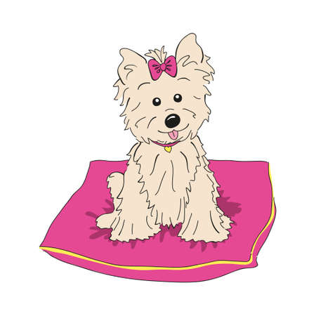 Cairn terrier dog breed vintage illustration