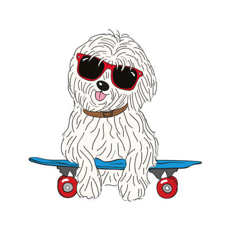 coton de tulear dog breed vintage illustration