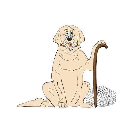 labrador aged dog breed vintage illustration isolated