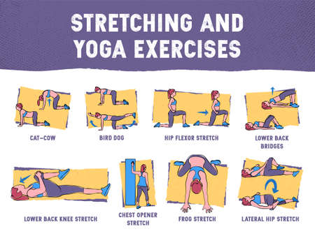 This colourful illustration demonstrates in detail how to execute correctly exercises for the stretching and yoga