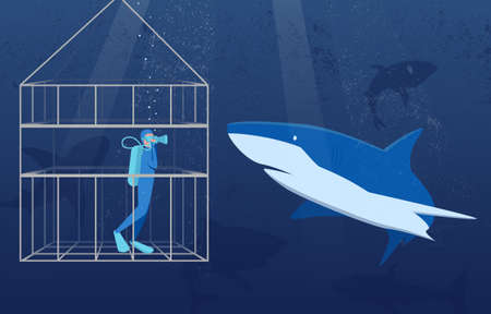 This colourful illustration shows a scuba diver in a special protective cage, he is watching the white shark in its natural habitat.