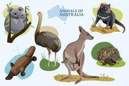Wektor ilustracja zestaw australijskich dzikich zwierząt