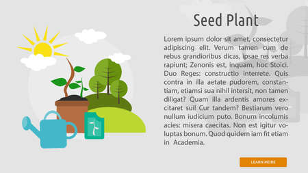plant seed: Seed Plant Conceptual Banner