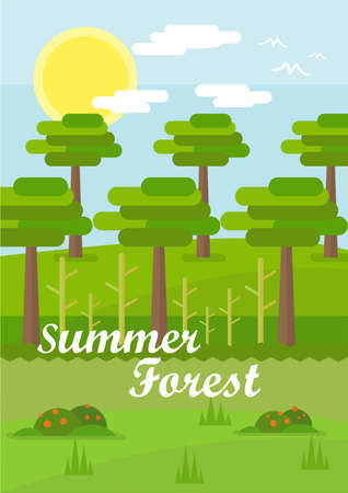 Summer Forest Background