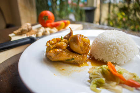 Chicken Soy Sauce with RIce, Chicken Food, Indonesian Food | Asian Food