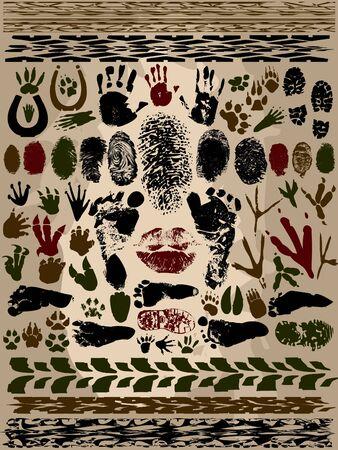 huellas de animales: Pistas Elementos - las personas, los animales, de extranjer�a y Veh�culos