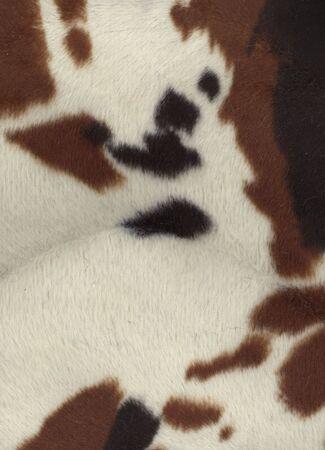 faux: Faux Cow Fur Tessuto Archivio Fotografico