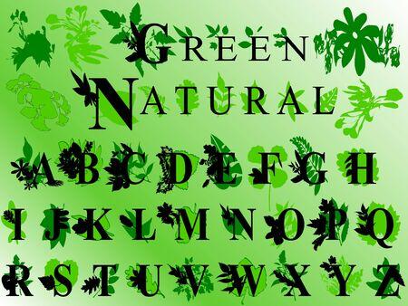 Elegant leaves font Stock Photo - 3442904
