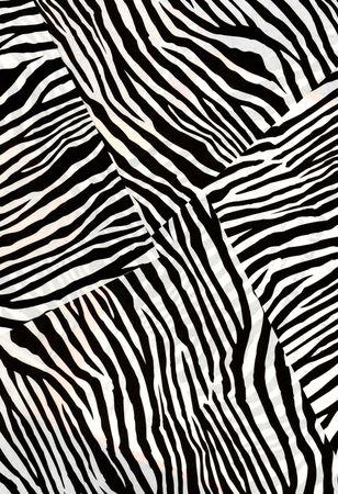textured: Animal fur texture Stock Photo