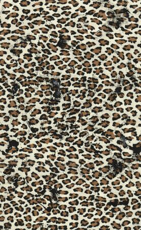 skins: Animal fur texture Stock Photo