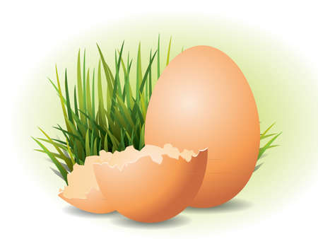 Easter Eggs and grass Stock Vector - 9313035