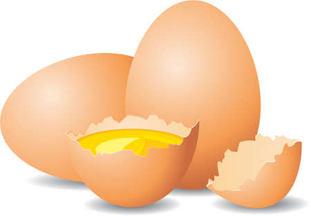 Close up view of eggs Stock Vector - 9313037