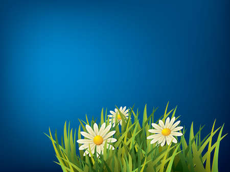 blue sky and fields: Flower in green grass and blue background Illustration